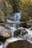Mountain river among the rocks Royalty Free Stock Photo