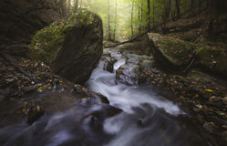 Mountain river with rocks and rapids Stock Image