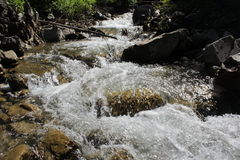 Mountain river. Rough river flows in the shimmering sun Stock Photos