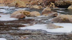 Mountain river runs rapidly. Beautiful creek flowing fast and rages between the rocks and ice stock footage