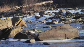 Mountain river runs rapidly. Beautiful creek flowing fast and rages between the rocks and ice stock video footage