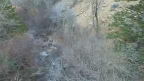 Mountain river rushing down with trees on both sides. Aerial view of a mountain stream or river rushing down between the forest trees.  No leaves on the trees as stock footage
