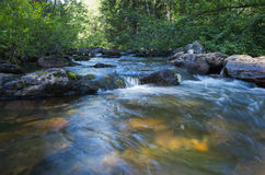 Mountain river in Russia Stock Images