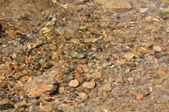 Mountain river's waves. Rocks under the water. Stock Photos