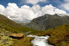 Mountain river. Seven Lakes Valley near  Belukha (Altay Royalty Free Stock Photography