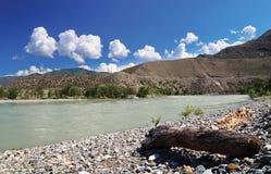 Mountain river shore stones sunny summer day Mountain Altai Katun Stock Image