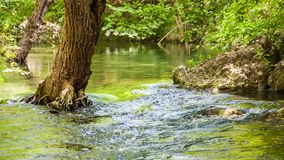 Mountain River Slowing Moving Among Greenery And. In the frame there is a beautiful and picturesque view of a calm mountain river peacefully flowing in greenery stock video footage