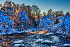 Mountain river and snow covered trees Royalty Free Stock Images