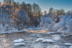 Mountain river and snow covered trees Royalty Free Stock Photography