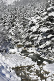Mountain river snow during the winter. The photo was taken in North Ossetia, in the Digor gorge Royalty Free Stock Photos