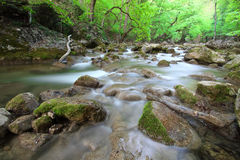 The mountain river in the spring with dim water Stock Photo