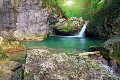 Mountain river. Spring rill flow. Stock Photos