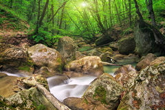 Mountain river in spring. Royalty Free Stock Photos