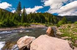 Mountain river in springtime. Beautiful scenery with spruce forest on a rocky shore. camping place and wooden bridge in the distance Stock Photo