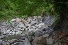 Mountain river in the stone bed. At summer Royalty Free Stock Image