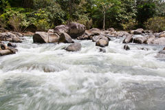 Mountain river with stones Royalty Free Stock Image