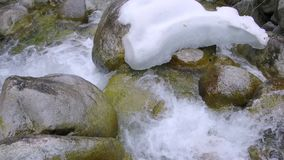 Mountain river stones. Fast mountain stream among the stones  spring a thaw in the forest stock video