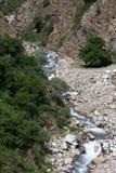 Mountain river. Stones. Green plants Royalty Free Stock Photo