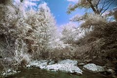 Mountain river with stones infrared photo Stock Photography