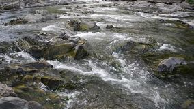 Mountain River with Stones with Transparent Water stock video footage