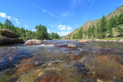 Mountain river. Stock Image