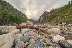 Mountain river. Royalty Free Stock Photography