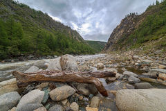 Mountain river. Royalty Free Stock Images