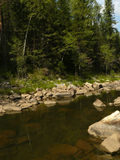 The mountain river the stony coast in the wood summer Russia Sou Stock Photography