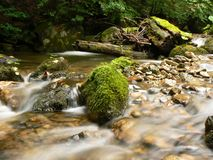 Mountain river stream. Water flows along a mountain stream Stock Image