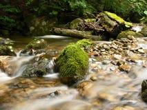 Mountain river stream. Water flows along a mountain stream stock image