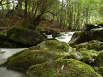 Mountain river stream Royalty Free Stock Photos