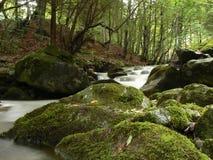Mountain river stream. Water flows along a mountain stream royalty free stock photos
