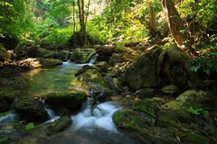 Mountain river with stream Royalty Free Stock Images