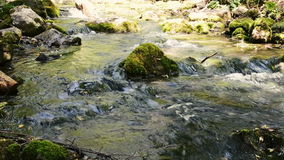 Mountain River Stream Babbles over Moss Rocks. Gentle flowing ice cold river stream flows over moss covered stones and rocks stock video