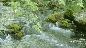 Mountain River Stream Babbles over Moss Rocks. Gentle flowing ice cold river stream flows over moss covered stones and rocks stock video footage