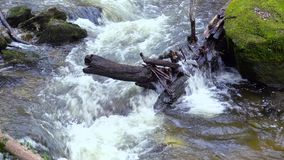 Mountain river, water flowing over rocks and boulders. Mountain river, stream, creek with rapids flowing through woods in late autumn, early winter with snow stock footage