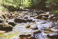 Free Mountain River Stream Through Summer Forest. Clear Water. Day In Nature Stock Images - 209315004