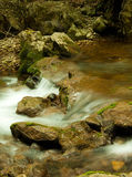 Mountain River in summer Royalty Free Stock Images