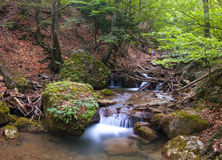 Mountain river. A mountain river in summer Stock Images