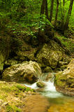 Mountain River in the  summer day Royalty Free Stock Photo