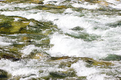 Mountain river by summer day Royalty Free Stock Photo