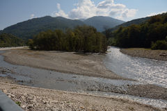 The mountain river in summer Royalty Free Stock Images