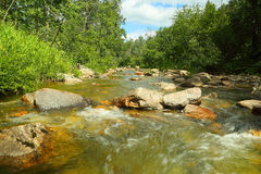 Mountain river at summer Royalty Free Stock Images