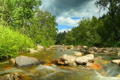 Mountain river at summer Royalty Free Stock Image
