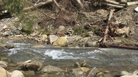 Mountain river in sunny day with audio. Fast stream stock video footage