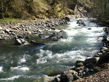 Mountain river on sunny day in spring Stock Images