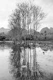 Mountain with river at Suoi Yen, Chua huong Royalty Free Stock Photography