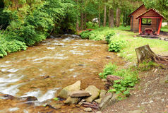 Mountain river. Swift mountain river in a picturesque forest Stock Image