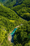 Mountain river Tara. And forest in Montenegro. View from Durdevica arc bridge Stock Photo
