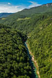 Mountain river Tara. And forest in Montenegro. View from Durdevica arc bridge Royalty Free Stock Photography